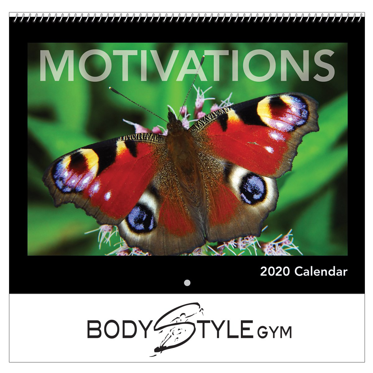 30/% Off Additional Calendars! Butterflies 2020 Wall Calendar /& Stickers